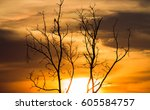 colorful dramatic sky with... | Shutterstock . vector #605584757