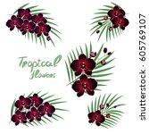 floral vector illustration. the ... | Shutterstock .eps vector #605769107