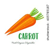 vector carrot . vegetable... | Shutterstock .eps vector #605785187