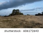 kootwijk desert in the... | Shutterstock . vector #606172643