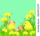 two chicks with egg shells and... | Shutterstock .eps vector #606301247