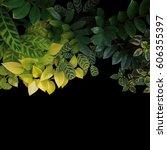 tropical garden plants leaves... | Shutterstock . vector #606355397