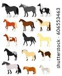 horse breeds set | Shutterstock .eps vector #606553463