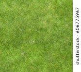 texture green lawn grass | Shutterstock . vector #606775967