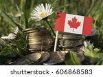 Canadian Flag With Stack Of...