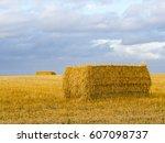 single straw bale