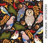 forest birds seamless | Shutterstock .eps vector #607222553