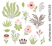 floral vector collection | Shutterstock .eps vector #607465133