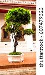 the tree | Shutterstock . vector #607479323