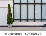 beige wall with green plant in... | Shutterstock . vector #607500527
