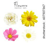 natural vector set flowers... | Shutterstock .eps vector #607507367