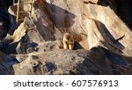life style | Shutterstock . vector #607576913