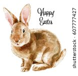 Stock photo easter rabbit hand drawn sketch and watercolor illustrations watercolor painting funny rabbit 607777427
