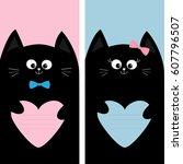 black cat kitty family holding...   Shutterstock . vector #607796507