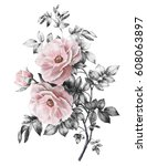 Stock photo watercolor flowers floral illustration in pastel colors pink rose branch of flowers isolated on 608063897
