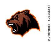 furious bear head sport vector... | Shutterstock .eps vector #608666567
