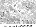 hand drawn underwater natural... | Shutterstock .eps vector #608837507