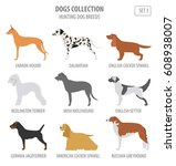 hunting dog breeds collection... | Shutterstock .eps vector #608938007