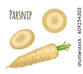 fresh parsnip vegetable.... | Shutterstock .eps vector #609254303