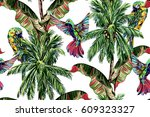 palm trees  parrot  hummingbird ... | Shutterstock .eps vector #609323327