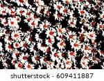 white daisies with orange... | Shutterstock . vector #609411887