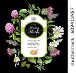 vector healing herbs vertical... | Shutterstock .eps vector #609413987