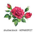 Stock photo red rose with leaves and buds watercolor 609683927