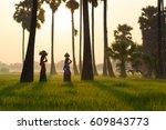 bali indonesia and rice farm...   Shutterstock . vector #609843773