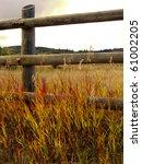 Warm Colors Of Autumn Prairie...