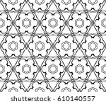 geometric pattern with floral... | Shutterstock .eps vector #610140557