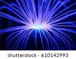 fluorescent blue anemone deep... | Shutterstock . vector #610142993