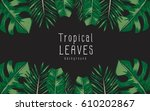 vector of tropical leaves on... | Shutterstock .eps vector #610202867