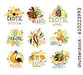 exotic summer vacation colorful ... | Shutterstock .eps vector #610223993