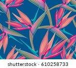 seamless tropical flower  plant ... | Shutterstock . vector #610258733