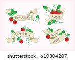 floral vector banner strawberry | Shutterstock .eps vector #610304207