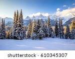 men snowshoeing in the... | Shutterstock . vector #610345307