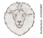 portrait of a lion  drawing by... | Shutterstock .eps vector #610362887