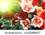 colorful floral background | Shutterstock . vector #610388897