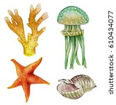 hand draw sea flora and fauna... | Shutterstock . vector #610434077