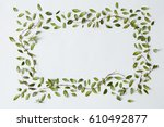 rectangular frame of green... | Shutterstock . vector #610492877