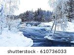 winter forest wild river...