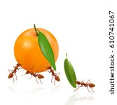 the ants are moving orange and... | Shutterstock .eps vector #610741067