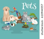 Stock photo domestic animals care puppy and bird set cute home pets cartooned dog and cat shop icons fish 610944557