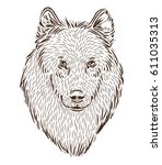 portrait of a wolf  drawing by... | Shutterstock .eps vector #611035313