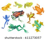 Frog Cartoon Tropical Animal...