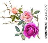 illustration of beautiful... | Shutterstock . vector #611310077