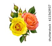 Flower Composition. Isolated O...
