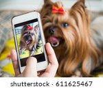 a woman's hand holds a... | Shutterstock . vector #611625467