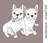 bulldog french  dog vector ... | Shutterstock .eps vector #611647187