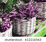 heather in wicker basket on... | Shutterstock . vector #612216563